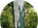 Podkład na ocynk aluminium 3202