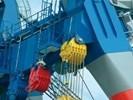 Nawierzchnia epoksydowa elastyczna B95 do przemysłu