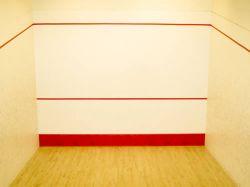 Farba do squasha