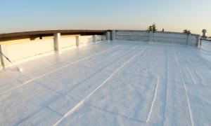 Malowanie dachu z papy na biało