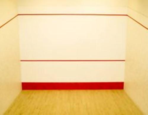 Farba do kortu squash