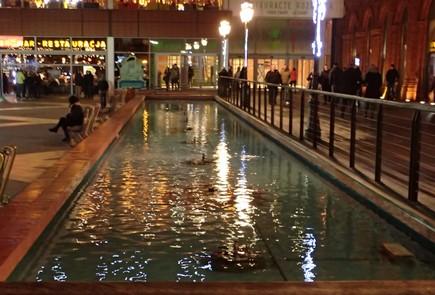 Farba do fontanny basenu