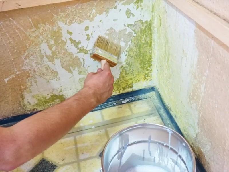 Odporny na pleśń podkład do ścian i sufitów