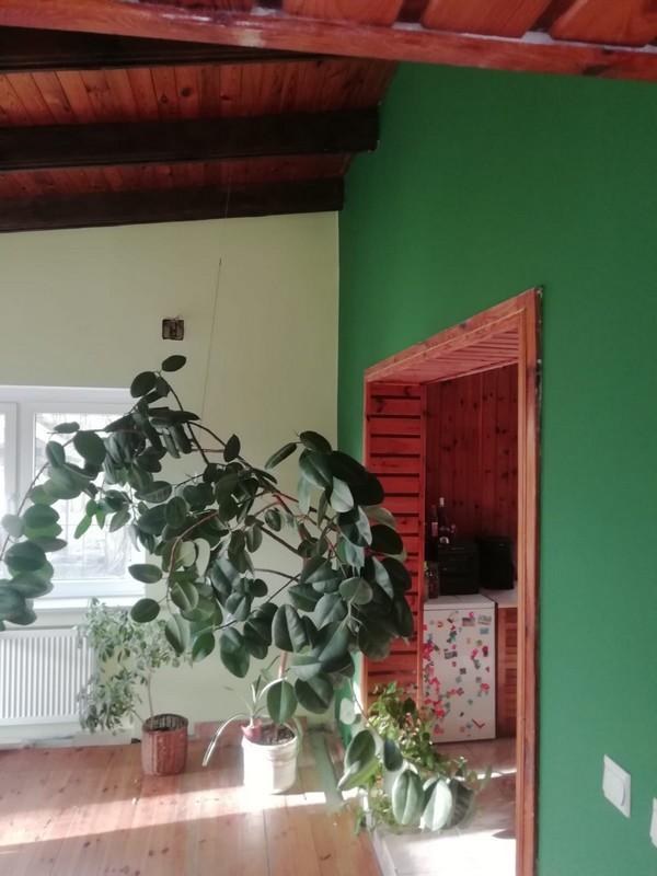 Farba akrylowa do ścian Deco Acryl w kolorze RAL 6001