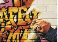 Środek do czyszczenia graffiti PH Cleaner