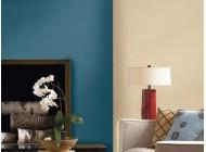 Farba zmywalna do ścian Timeless