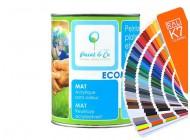 Ekologiczna farba do ścian Ecomat - kolory RAL z mieszalnika